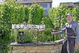 L'ultime vigneron de Villars-le-Grand