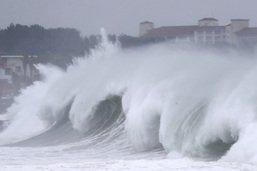 Le typhon Maysak se déchaîne sur la Corée du Sud