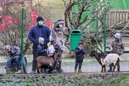 Pas de vacances pour les animaux du zoo de Servion