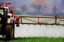 Les sols et les pesticides en question
