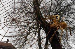 Une araignée géante à Bulle