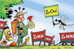 Le moustique tigre, un insecte qui ne se laissera pas facilement éradiquer