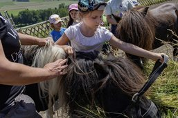 Batailles d'eau, poneys et écouvillons
