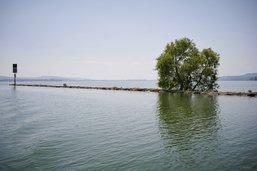 La baignade est à nouveau autorisée dans le lac de Neuchâtel